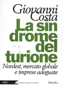 La sindrome del turione. Nordest, mercato globale e imprese adeguate - Giovanni Costa - copertina