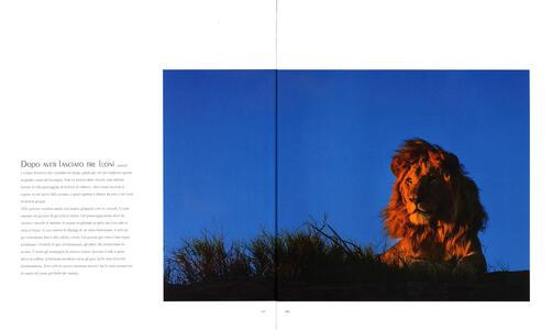 Luce e polvere. Immagini e storie dalle savane dell'Africa Orientale. Ediz. illustrata - Federico Veronesi - 4