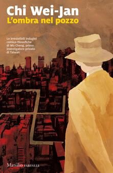 Antondemarirreguera.es L' ombra nel pozzo Image