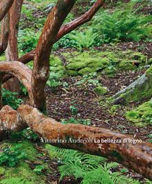 La bellezza di legno. Ediz. a colori.pdf