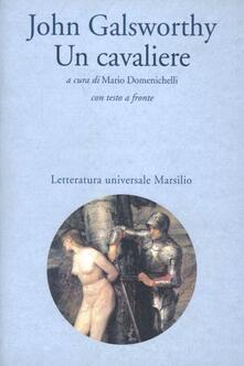 Camfeed.it Un cavaliere Image