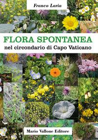 Flora spontanea nel circondario di Capo Vaticano. Ediz. illustrata - Laria Franco - wuz.it