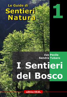 Osteriacasadimare.it I sentieri del bosco. 40 itinerari escursionistici alla scoperta deli boschi della montagna friulana Image