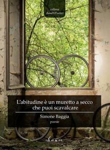 L' abitudine è un muretto a secco che puoi scavalcare - Simone Baggia - copertina