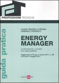 Energy manager. La formazione, i compiti e le responsabilità