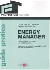 Energy manager. La formazione, i compiti e le responsabilita