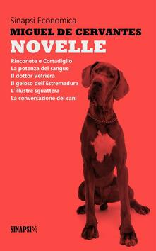 Novelle - Alfredo Giannini,Miguel de Cervantes - ebook
