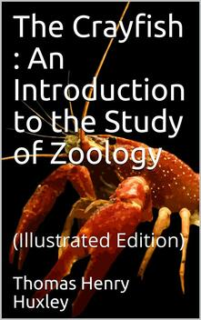 The Crayfish / An Introduction to the Study of Zoology. The International Scientific Series, Vol. XXVIII