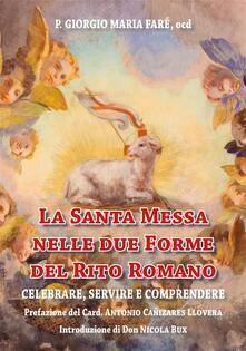 La santa messa nelle due forme del rito romano. Celebrare, servire e comprendere - Giorgio Maria Faré - ebook
