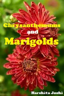 Chrysanthemums and Marigolds