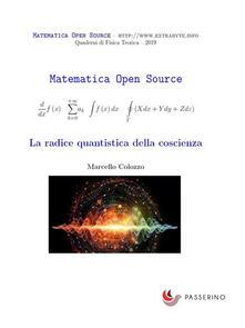 La radice quantistica della coscienza - Marcello Colozzo - ebook