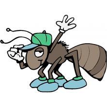 pascal la formica e la valle incantata - Marco Di Russo - ebook