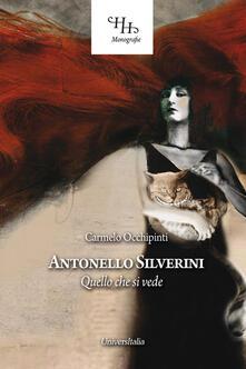 Antonello Silverini. Quello che si vede - Carmelo Occhipinti - copertina