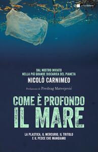 Come è profondo il mare. La plastica, il mercurio, il tritolo e il pesce che mangiamo - Nicolò Carnimeo - copertina
