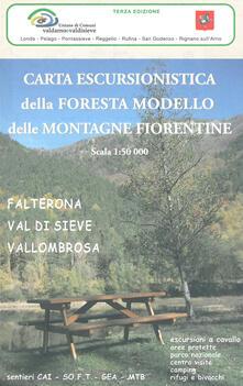 Criticalwinenotav.it Carta escursionistica della Foresta modello delle montagne fiorentine. Falterona, Val di Sieve, Vallombrosa 1:50.000 Image