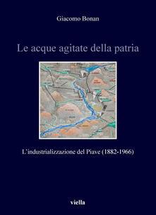Le acque agitate della patria. L'industrializzazione del Piave (1882-1966) - Giacomo Bonan - ebook