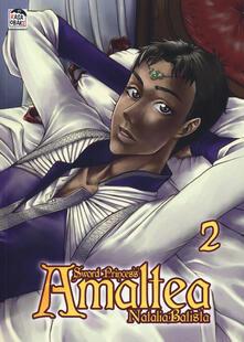 Secchiarapita.it Sword princess Amaltea. Vol. 2 Image