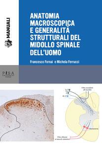 Anatomia macroscopica e generalità strutturali del midollo spinale dell'uomo