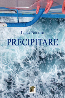 Precipitare - Luisa Bolleri - copertina