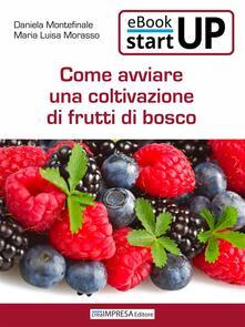 Come avviare una coltivazione di frutti di bosco - Daniela Montefinale,Maria Luisa Morasso - ebook