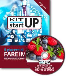 Come avviare una coltivazione di frutti di bosco. Con CD-ROM - Daniela Montefinale,Maria Luisa Morasso - copertina