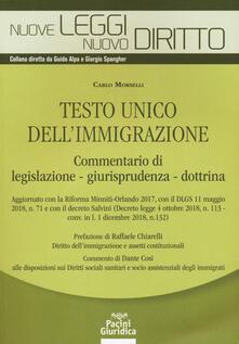 Antondemarirreguera.es Testo unico dell'immigrazione. Commentario di legislazione, giurisprudenza, dottrina Image