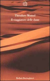 Il viaggiatore delle dune