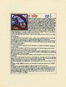 Libro Il libro rosso. Liber novus Carl Gustav Jung 1