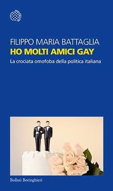 Secchiarapita.it Ho molti amici gay. La crociata omofoba della politica italiana Image