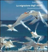Le migrazioni degli uccelli