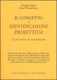 Il concetto di identificazione proiettiva. La sua nascita e la sua evoluzione