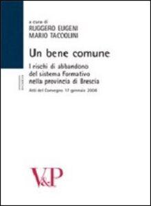 Libro Un bene comune. I rischi di abbandono del sistema formativo nella provincia. Atti del Convegno (Brescia, 17 gennaio 2008)