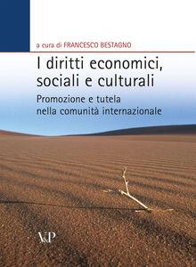 Libro I diritti economici, sociali e culturali. Promozione e tutela nella comunità internazionale