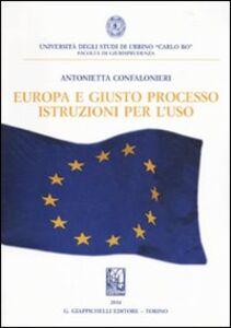 Foto Cover di Europa e giusto processo. Istruzioni per l'uso, Libro di Antonietta Confalonieri, edito da Giappichelli