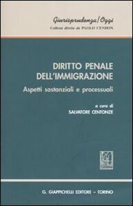 Diritto penale dell'immigrazione. Aspetti sostanziali e processuali - copertina