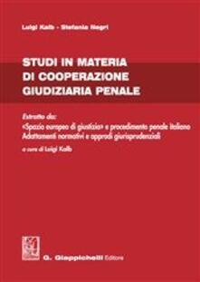 Camfeed.it Studi in materia di cooperazione giudiziaria penale Image