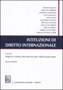 Equilibrifestival.it Istituzioni di diritto internazionale Image