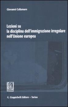Daddyswing.es Lezioni su la disciplina dell'immigrazione irregolare nell'Unione Europea Image