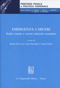 Libro Emegenza carceri. Radici remote e recenti soluzioni normative. Atti del Convegno (Teramo, 6 marzo 2014)