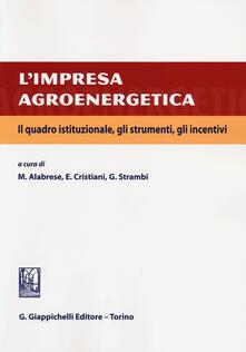 Radiospeed.it L' impresa agroenergetica. Il quadro istituzionale, gli strumenti, gli incentivi Image