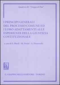 Libro I principi generali del processo comune ed i loro adattamenti alle esperienze della giustizia costituzionale. Atti del Convegno (Siena, 8-9 giugno 2007)