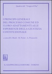 I principi generali del processo comune ed i loro adattamenti alle esperienze della giustizia costituzionale. Atti del Convegno (Siena, 8-9 giugno 2007)