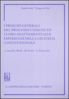 Listadelpopolo.it I principi generali del processo comune ed i loro adattamenti alle esperienze della giustizia costituzionale. Atti del Convegno (Siena, 8-9 giugno 2007) Image