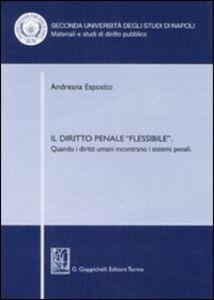 Libro Il diritto penale «flessibile». Quando i diritti umani incontrano i sistemi penali Andreana Esposito