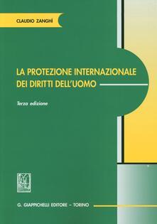 Lpgcsostenible.es La protezione internazionale dei diritti dell'uomo Image