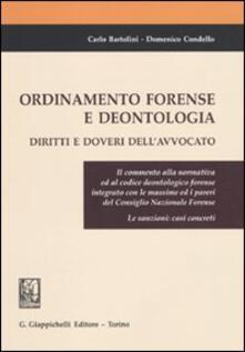Voluntariadobaleares2014.es Ordinamento forense e deontologia. Diritti e doveri dell'avvocato Image