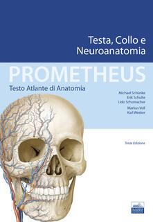 Promoartpalermo.it Prometheus. Testo atlante di anatonomia. Testa, collo e neuroanatomia Image