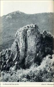 Foto Cover di Alpi Liguri, Libro di  edito da Touring 1
