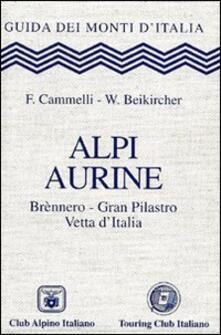 Rallydeicolliscaligeri.it Alpi Aurine. Brennero, Gran Pilastro, Vetta d'Italia Image