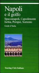 Napoli e il Golfo. Ediz. illustrata